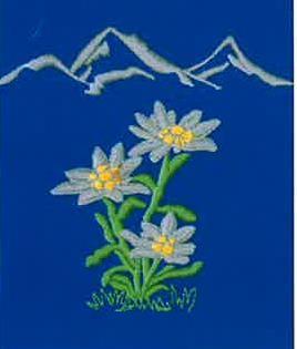 Original Südtiroler Schürze - Edelweiss mit Berg